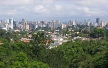 Curitiba-forestskyline